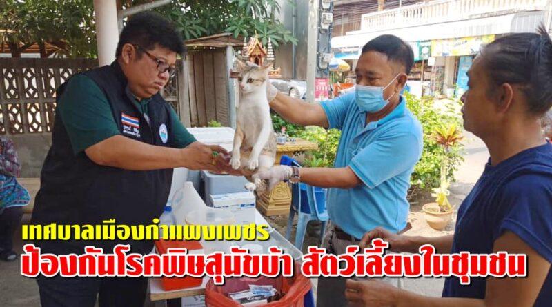 ป้องกันโรคพิษสุนัขบ้า สัตว์เลี้ยงในชุมชน อนันตสิงห์ และ ชุมชนป่าไม้