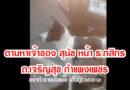 หมาหลง ตามหาเจ้าของ หน้า ธ.กสิกรไทย เมืองกำแพงเพชร