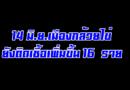14 มิ.ย.เมืองกล้วยไข่ ยังติดเพิ่มขึ้น 16 ราย